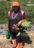 oogsten met Roteb