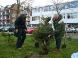 kerstbomen naar de seizoenstalling